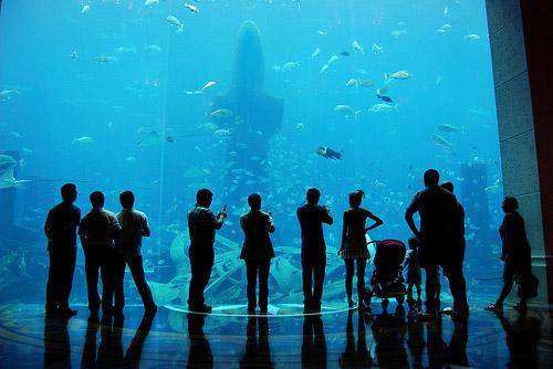 Aquarium in Atlantis, Dubai