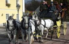 Coaching in Bavaria, Germany