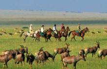 Horseback safari in the Masai Mara, Kenya