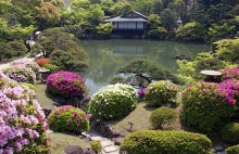 Japan Traditional Gardens