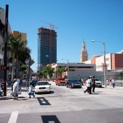 Miami City Life